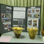 Young-growth koa study display: Don Albrech's  bowls and Scott Hare's calabash.